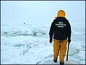 2005 killing floes...Read the story...