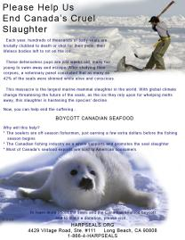 Help Us End the Canada's Cruel Slaughter