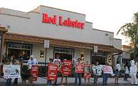 Red Lobster Protest - Hollywood, FL