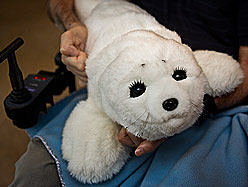 seal doll - photo Chantal Poirier - QMI Agency